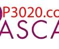 Pascal - P3020.com